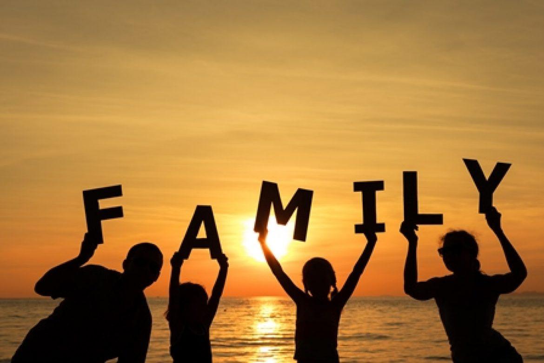 Dan družine
